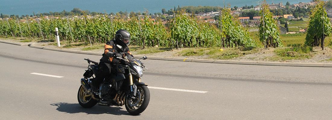 moto-v2.jpg